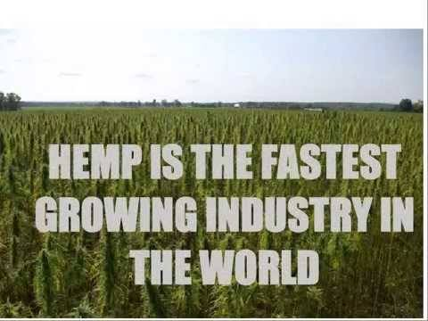 Hemp vs. Marijuana (Seed and Cultivation)