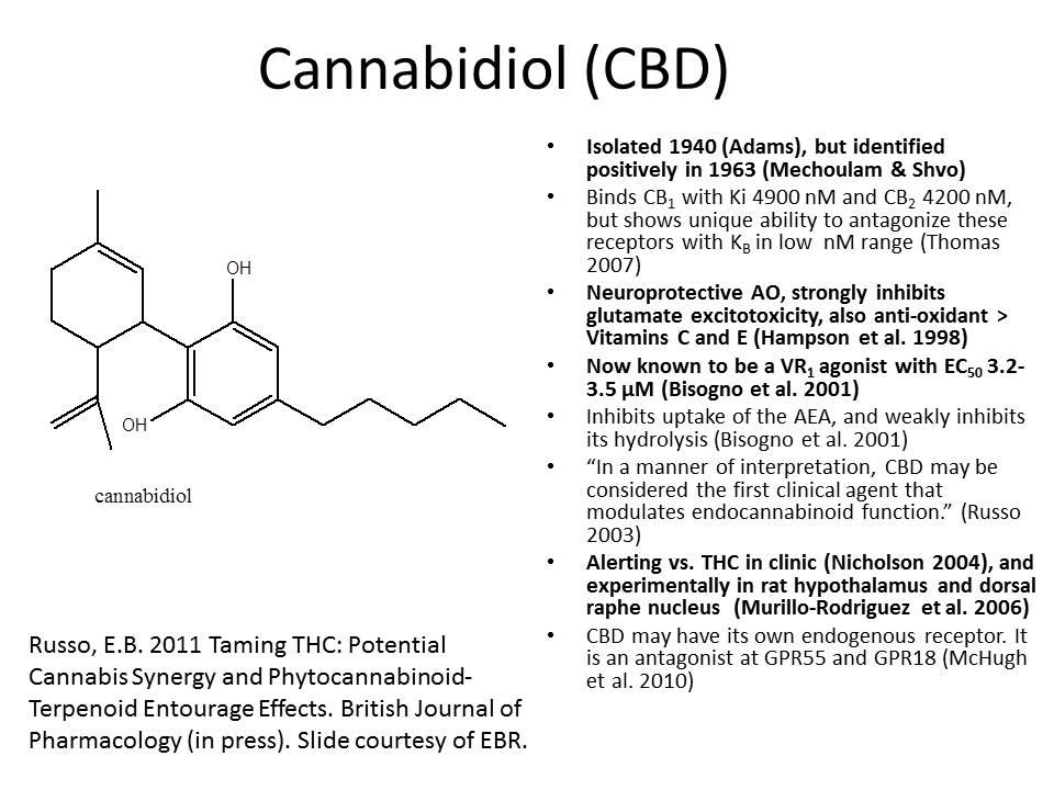 CBD-summary