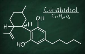 Article: WHAT ARE CANNABINOIDS?