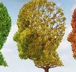 Article: Cannabinoid Medicine and Alzheimer's Disease Treatment