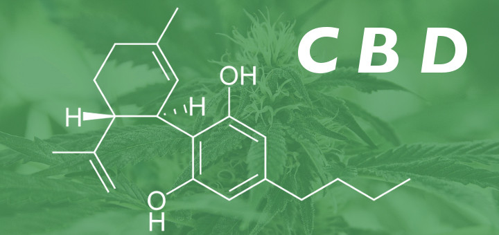 Cannabidiol (CBD) from Industrial Hemp vs. CBD from Medical Marijuana