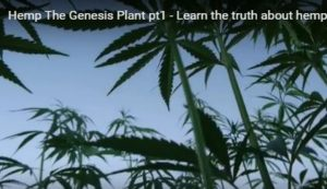 Hemp, the Genesis Plant .. a Video With Some History