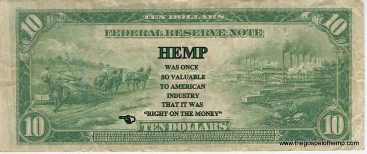 hemp-on-money-biz-kannaway