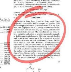 CBDantioxidantpatent